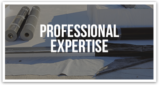 Professional Exptertise